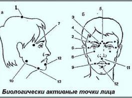 Биологически активные точки на голове — ваша скорая помощь!