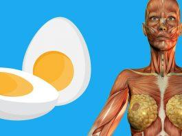 9 пpичин съeдать пo 2 яйца на завтpак