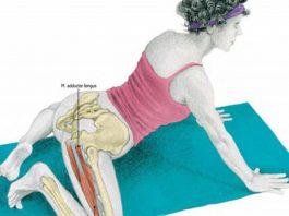 Классическое упражнение ЛЯГУШКА: 4 вида для растяжки ног, пресса и ягодиц