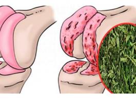 Врач натуропат рекомендует: простое средство для восстановления хрящей коленей, суставов и укрепления костей