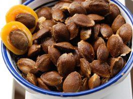 Косточки от абрикосов не выбрасываем. Бесплатная и самая лучшая профилактика рака
