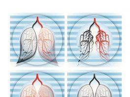 Кто правильно дышит – тот долго живет. 10 упражнений, дающих спокойствие