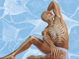 Осознанное долголетие: 12 эффективных упражнений, продлевающих жизнь