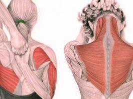 Волшебные упражнения для шеи: Освобождают от зажимов и нормализуют давление