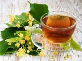 Липовый чай. Полезные свойства, состав, вред и противопоказания