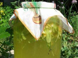 Липовый лимонад — ароматный и вкусный, очень-очень полезный. В жару — самый лучший напиток