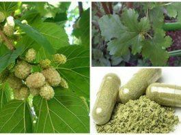 Это растение повсюду, но вы понятия не имели, что оно может лечить опухоли, диабет и высокое артериальное давление