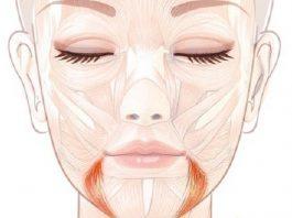 Поднимаем уголки губ: упражнение «улыбка»