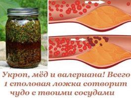 Укроп, мед, валериана — и теперь сосуды без изъяна