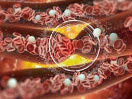 6 природных средств для разжижения крови. Очень полезная информация