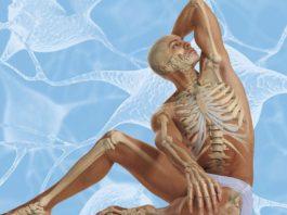 Осознанное долголетие: вот 12 упражнений, продлевающих жизнь