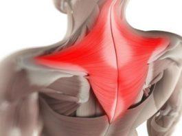 Простой способ снять мышечные зажимы шеи и спины. Боль быстро уходит