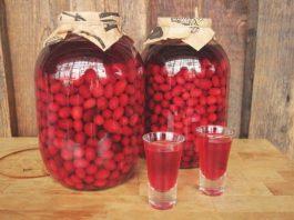 10 необходимых целебных настоек из ягод, которые лечат много болезней