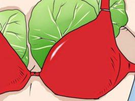 Что будет, если прикладывать капустные листы к груди. Через неделю я была поражена