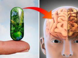 Исследования доказали: эти 3 витамина предотвращают потерю памяти и болезнь Альцгеймера