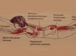 Избавься от болей в спине, улучши пищеварение и гормональный баланс. 1 простое упражнение на 5-8 минут