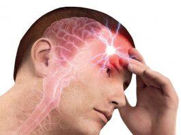 Крепкие сосуды — это ясная голова. Как забыть о старости и инсульте: нехитрые бесценные рецепты