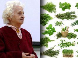 Минутка здоровья: Мудрые советы травницы из Сибири Лидии Суриной