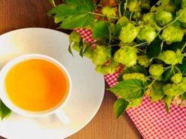 Очень полезный, но забытый: «хмельной чай» для чистых сосудов и крепкого сердца