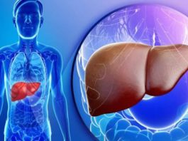 Высокие ферменты печени в результатах анализа крови и их значение