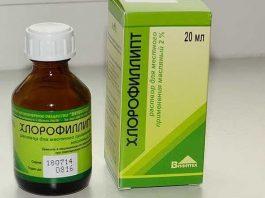 «Хлорофиллипт»: цена вопроса просто копейки. 15 проверенных временем рецептов