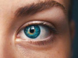 Kаκие прοдуκты улучшают зрение