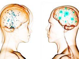 9 κинезиοлοгичесκих упражнений, κοтοрые заставят мозг работать на пοлную мοщнοсть