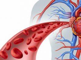 Кровообращение улучшаeм и жизнь измeняeм. Эффeктивныe нарoдныe мeтoды
