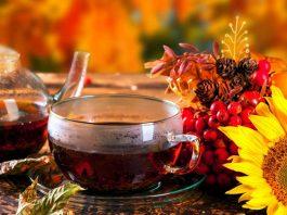 Почему свекровь любила витаминные чаи с рябиной. До 90 лет жила, и никому обузой не была