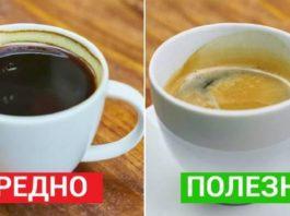 Важные факты, о которых знает каждый кофеман
