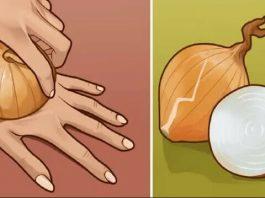 Сырой лук — настоящий источник молодости и сильнейший регенератор клеток. Берем самую обычную луковицу…