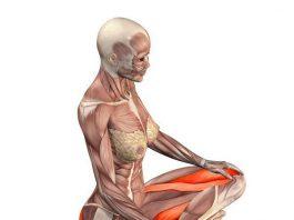 Это простое упражнение улучшает женское здоровье, избавляет от радикулита, грыж и варикоза