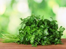 12 рецептов лечения петрушкой: отложение солей, аденома и нарушения потенции, снижение зрения и др.
