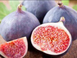 9 сильных растений для лечения варикоза и тромбофлебита