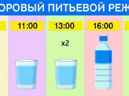 График для худеющих: ешь что хочешь и пей воду по часам. Результат — минус 15 % жира