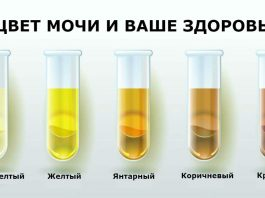 Вот что может рассказать о вашем здоровье цвет и запах вашей мочи