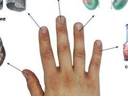 Каждый палец связан с 2-мя органами: японские методы лечения за 5 минут