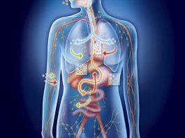 Симптомы закисления организма — это ВАЖНО знать